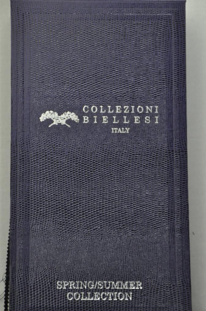 DSC11241 COLLEZIONI BIELLESI 2015ss