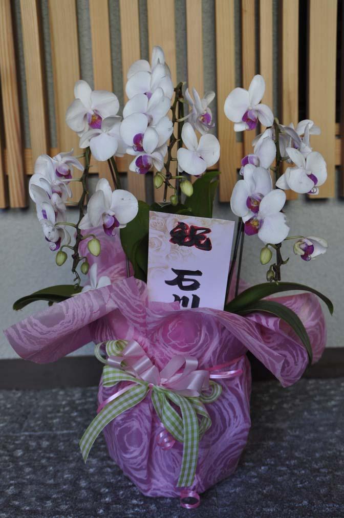DSC1229-2 たくさんのお祝いをいただきありがとうございます。 名古屋の完全予約制オーダースーツ専門店DEFFERT