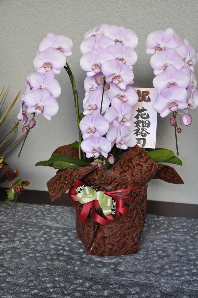 DSC1230-2 たくさんのお祝いをいただきありがとうございます。 名古屋の完全予約制オーダースーツ専門店DEFFERT