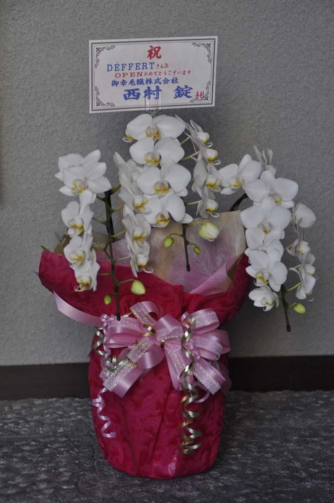 DSC1238-2 たくさんのお祝いをいただきありがとうございます。 名古屋の完全予約制オーダースーツ専門店DEFFERT
