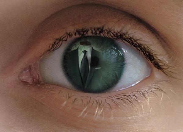 PhotoFunia-24b8a18 人の目の色によって見える色が違う??