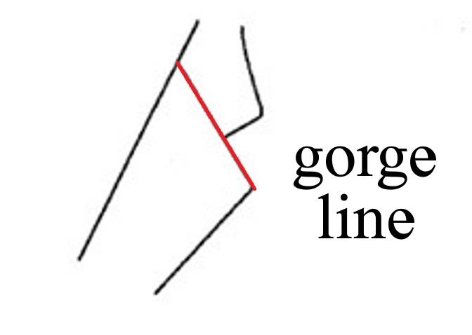 gorge-line ゴージラインとは?