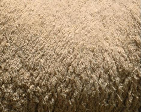 wool1 ウール(羊毛)の機能